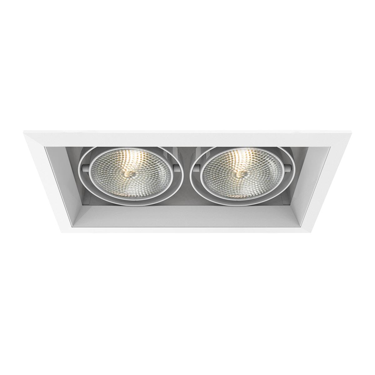 Eurofase TE132 2-Light PAR30 Multiple Recessed Light Fixture White
